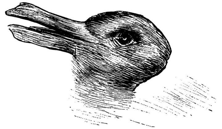 jastrow-que-animal-ves-conejo-pato-viral-ilustracion-720x420