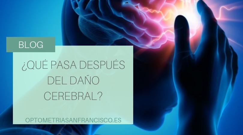 ¿que pasa despues del daño cerebral?